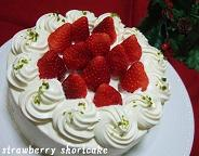 クリスマスショートケーキ2.JPG