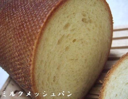 メッシュパンデビュー.jpg